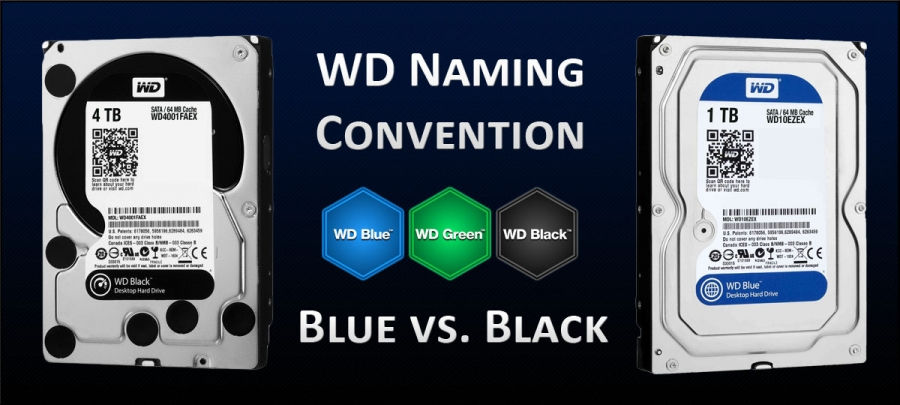 WD Blue vs. Black vs. Green Hard Drive Comparison – What's the Difference?
